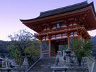 京都朝観光